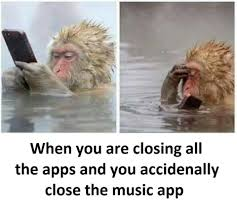 Funny Meme Apps - closing apps funny pinterest