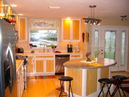 Cabinet Door Decals by Cabinet Tropical Kitchen Cabinets Tropical Kitchens Fort Myers