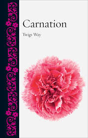 carnation way