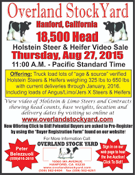 Second Chance Consignment Modesto Ca by Overland Stockyard Hanford Ca Cattle Auctions Dairy