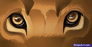 learn draw lion eyes safari animals animals free step