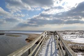 cape cod real estate cape cod homes for sale maureen on the