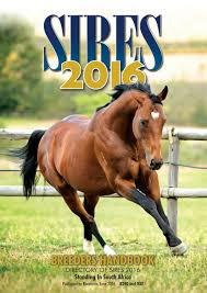 ||6yo hussy|International Racehorse Magazine June 2016