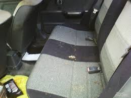 Car Upholstery Detailing Washing The Interior Of A Moldy Car