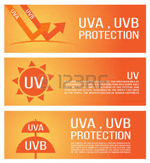 uva and uvb light human skin of absorbing and reflected uv rays uv