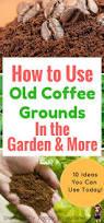 4941 best images about vegetable garden inspiration u0026 tips on