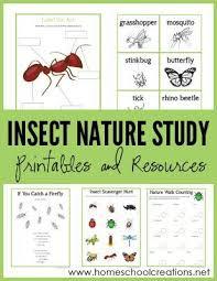 567 best free homeschool printables images on pinterest