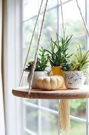 plant stand plants shelf hanging in window plant decor indoor