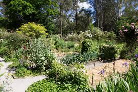 vegetable garden design and landscaping kitchen roger garden trends