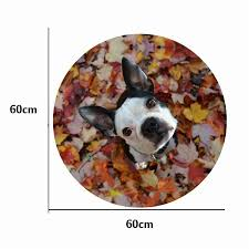 cute cat dog animal bathroom mats non slip round bath mat for