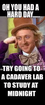 Med School Memes - 20 best med school memes images on pinterest med school memes