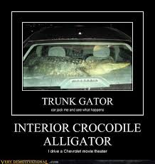Crocodile Meme - image 538387 interior crocodile alligator know your meme