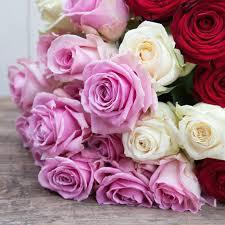 Flower Alt Code - flower depot inc home facebook
