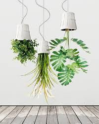Ikea Hanging Planter by Hanging Plants Upside Down Decoration Ideas Houseplants Plants