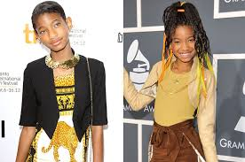 willow smith u0027s disappearing act and why u0027whip my hair u0027 wasn u0027t a