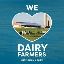 dairy diary american dairy north east
