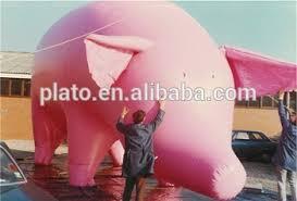 pig balloons pig balloons pig buy pig