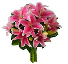 bouquet of lilies pink asiatic wedding bouquet wedding bouquets pink