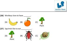 eating habits of animals science printable pdf worksheets and