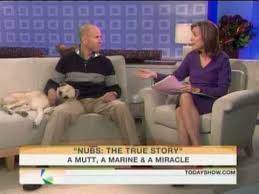 The Miracle True Story Nubs The True Story Of A Mutt A Marine A Miracle On Today