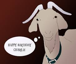 goat birthday card christmas sheep cute sheep with the gift in