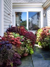 10 garden ideas to steal from provincetown on cape cod gardenista