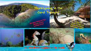 thanksgiving reefs upcoming events thanksgiving in the coral triangle barnacle busters