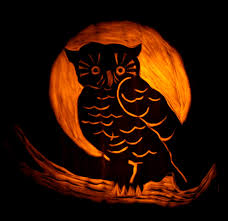 cute owl pumpkin carving pattern musical pumpkin carving ideas preschool of rock 60 best pumpkin