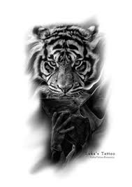 realistic tiger tattoo design done in black and grey by brandon