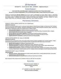 exles of professional summary for resume practitioner resume sle professional summary for buckey us
