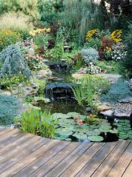 Garden Ideas For Backyard by Water Garden Landscaping Ideas