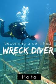 best 25 padi diving ideas on pinterest diving scuba diving and