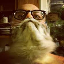 Cat Beard Meme - latest photo fad involves photographing your cat as your beard