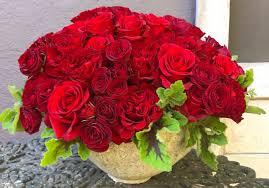 garden 26 in santa monica royal red velvet in santa monica ca domini carrington floral