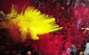 holi festival experience in mathura vrindavan padhaaro