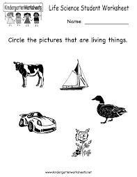 14 best images of science worksheets for kindergarten students