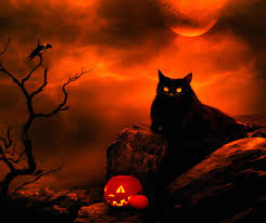 halloween abstract halloween cat wallpaper wallpapers browse