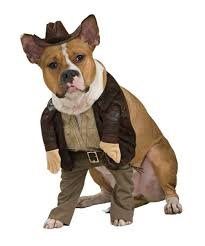 Halloween Costume Ideas For Pets Halloween Costume Ideas For Dogs