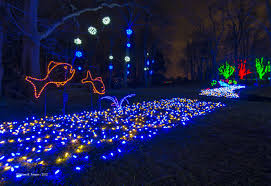Pics Of Light by Winter Walk Of Lights Nova Parks