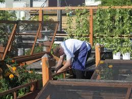 Houston Urban Gardeners - 20 best urban agriculture images on pinterest urban agriculture