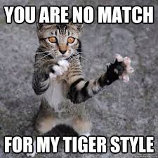 Meme Kung Fu - you are no match for my tiger style kung fu kitten quickmeme