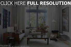 living room curtains ideas dgmagnets com