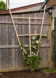 one canadian home how to build a wooden trellis