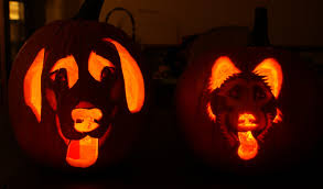 pumpkin carving ideas finest funny pumpkin carving ideas gallery