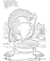 free farm animal coloring pages 339 best colouring pages images on pinterest drawings coloring