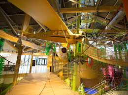 museum of curiosity