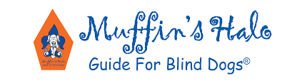 Halo For Blind Dogs Pet Insurance Embraces Blind Dogs By Covering Muffin U0027s Halo For
