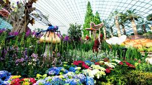 flower dome visitor information
