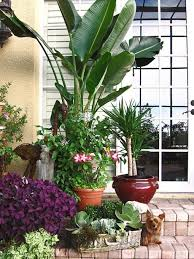 How To Decorate A Patio Best 25 Lanai Decorating Ideas On Pinterest Backyard Patio