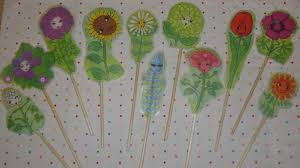 daisies u2013 lupe u0027s story plant plant electro what